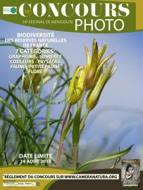 Affiche 3 - Concours photo Festival de Ménigoute - 2018