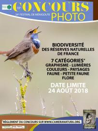 Affiche 4 - Concours photo Festival de Ménigoute - 2018