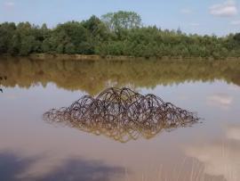 Oeuvre en bois - RN des Landes de Monteneuf © Christian Baudu
