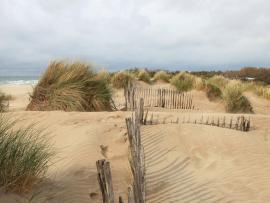 Le cordon dunaire © F. Hébraud-CAUE34