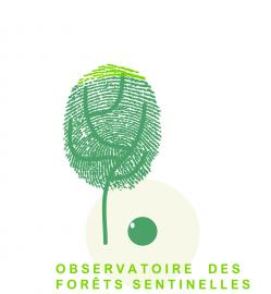 Logo Observatoire des Forêts Sentinelles