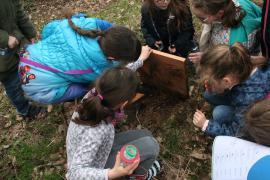 Vigie-nature escargot @ CEN Champagne-Ardenne