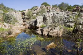 Ruisseau temporaire - © O. Bonnenfant / OEC