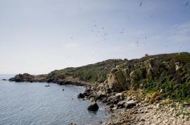 Île de Forana - © O. Bonnenfant / OEC