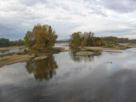 En aval de Pouilly-sur-Loire - © RNN Val de Loire