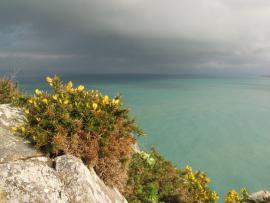 Vue sur la mer depuis les falaises - © RNN Baie de Saint-Brieuc