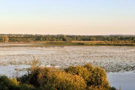 Vue de l'étang - © S. Parouty / CG23
