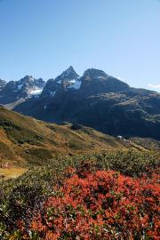 La réserve naturelle en été - © J. Heuret