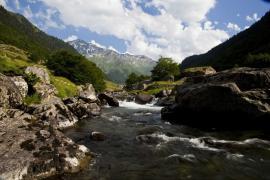 Torrent en vallée d'Ossau - © F. Lepage / Coeurs de nature / SIPA