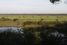 Vue du marais en avril - © Duloup / Commons