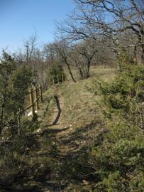 Sentier dans la réserve naturelle - © B. Fritsch / CENB