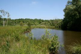 Vue de l'étang - © R. Monnehay / CEN Picardie