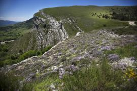 Environs de Digne - © M. Cristofani / Coeurs de nature / SIPA