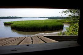 Observatoire dans la réserve - © W. Alix / Coeurs de Nature / SIPA