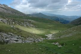 Pelouses alpines des sources du Techs - © P. Gaultier