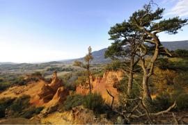 Le Colorado provençal et ses falaises d'ocre de Rustrel - © V. Damourette / Coeurs de nature / SIPA