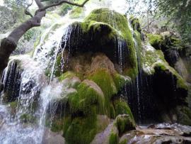 Cascade de tuf - © Y. Tranchant