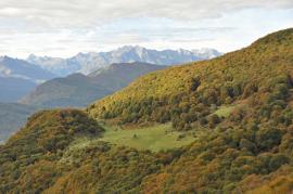Cabane d'Aizy - © RNR Massif du Pibeste Aoulhet