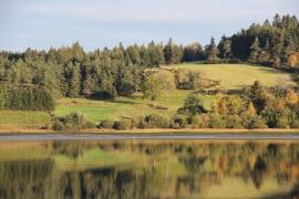 Vue sur le Lac - © D. Dauriat