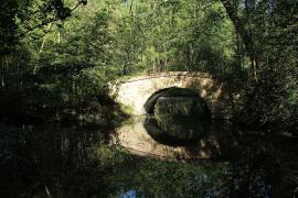 Pont en forêt - © L. Allorge / Commons