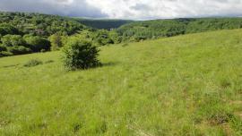 Pelouse sèche et vue sur la vallée de la Loue - © CPEPESC