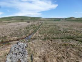 prairies humides formant le secteur sud de la tourbière © : Luc Belenguier/SMPNRVA