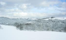 L'hiver dans la RNRGL - © FNE 42