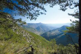 Paysage autour de la réserve - © J.-L. Rigaux