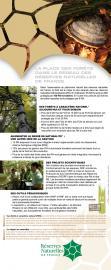 Valorisation scientifique du réseau RNF (Roll'up 1- Forêt)